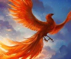 PhoenixFlights