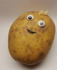 An_Actual_Potato